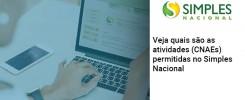 Veja Quais Sao As Atividades Cnaes Permitidas No Simples Nacional - Contabilidade no Rio de Janeiro - Audit Master Contadores