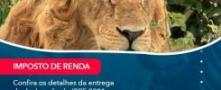 Confira Os Detalhes Da Entrega Da Declaracao Do Irpf 2021 E O Que Voce Precisa Saber Sobre 1 - Contabilidade no Rio de Janeiro - Audit Master Contadores